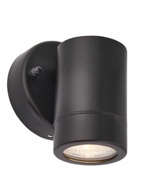 Palin stainless steel outdoor wall down spot light in black