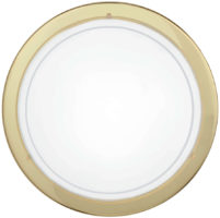 Circular Brass Flush Fitting Ceiling Light