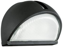 Black Finish Domed Angled Outdoor Wall Light