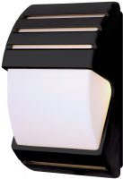 Black Low Energy Dusk Till Dawn Outdoor Wall Light