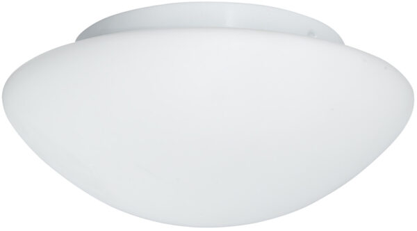 Flush Fitting 2 Lamp Opal Glass Bathroom Ceiling Light
