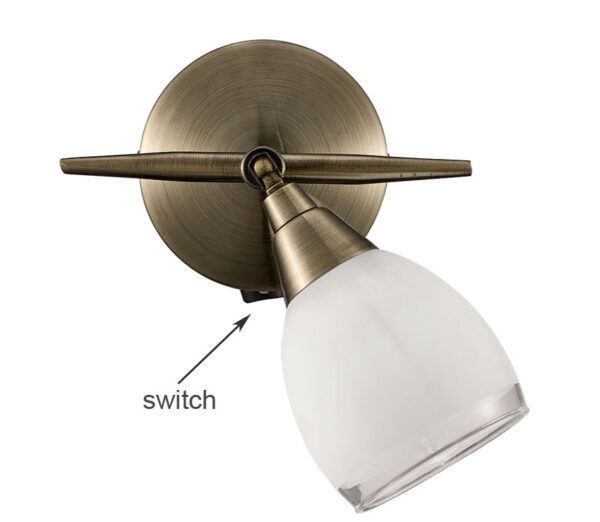Franklite Lutina Single Switched Wall Spot Light Bronze Finish