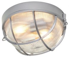 Hinkley Marina 2 Light Flush Outdoor Porch Light Holophane Glass