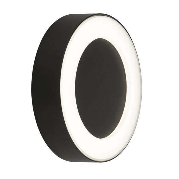 Modern Cool White LED Circle Outdoor Wall Light Black Frosted Shade